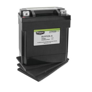 BikeMaster Lithium-Ion Batteries for Street DLFP12A-A  Battery, 134mm L x 75mm W x 133mm H