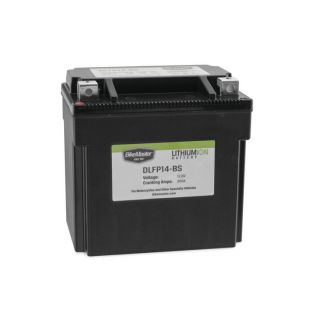 BikeMaster Lithium-Ion Batteries for Street DLFP14-BS Battery, 148mm L x 87mm W x 145mm H